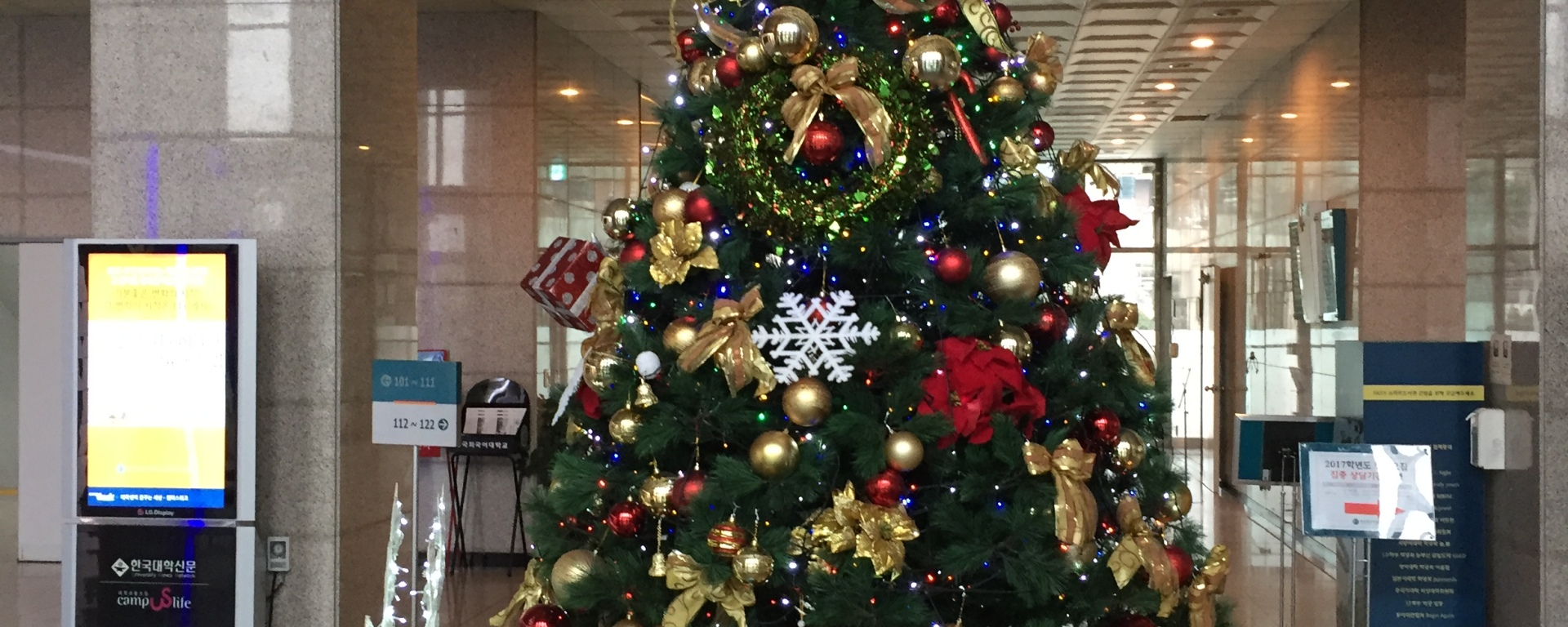 Christmas Alone Abroad - Hankuk University
