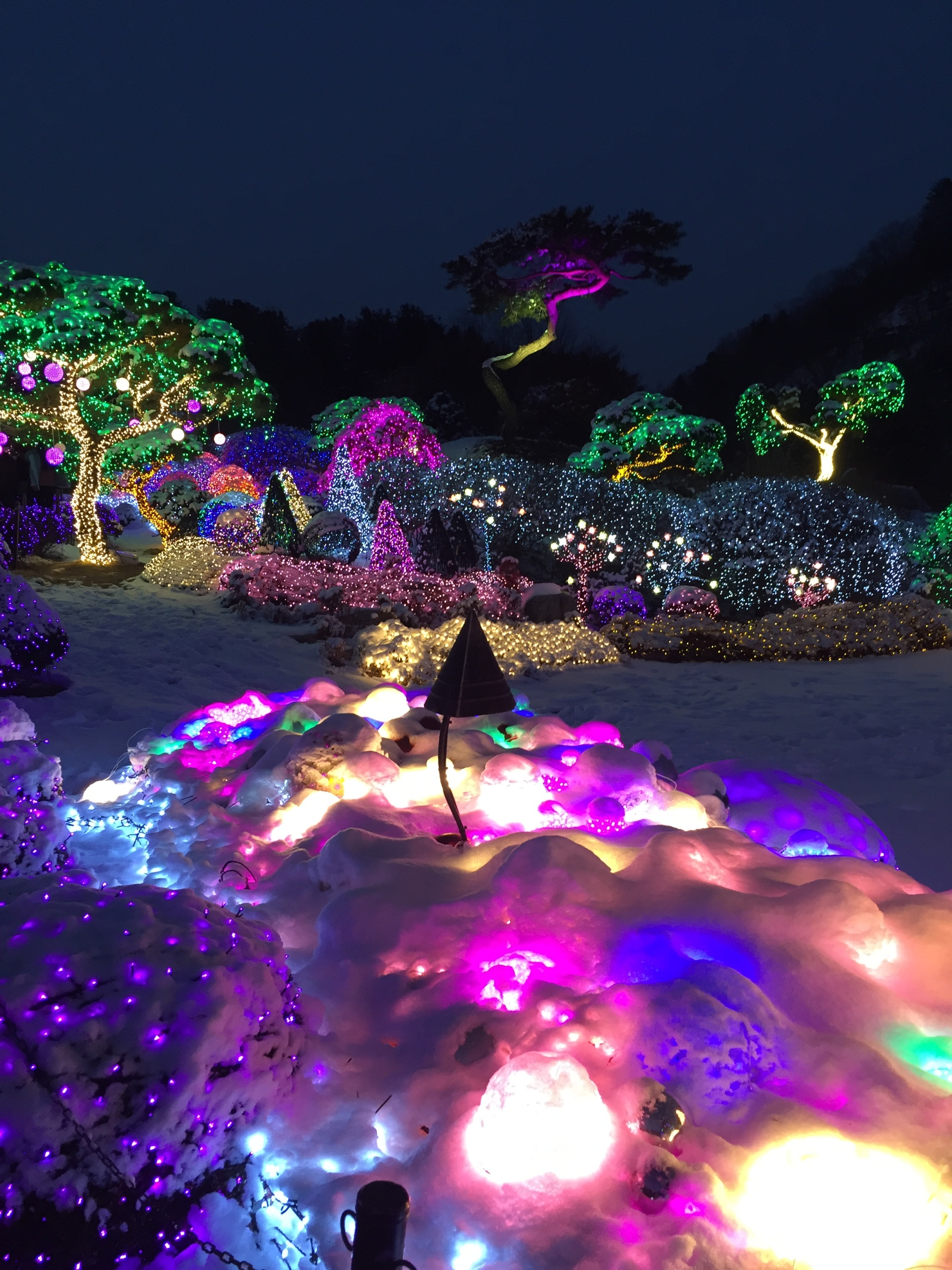 Garden of Morning Calm - South Korea's Top Attractions
